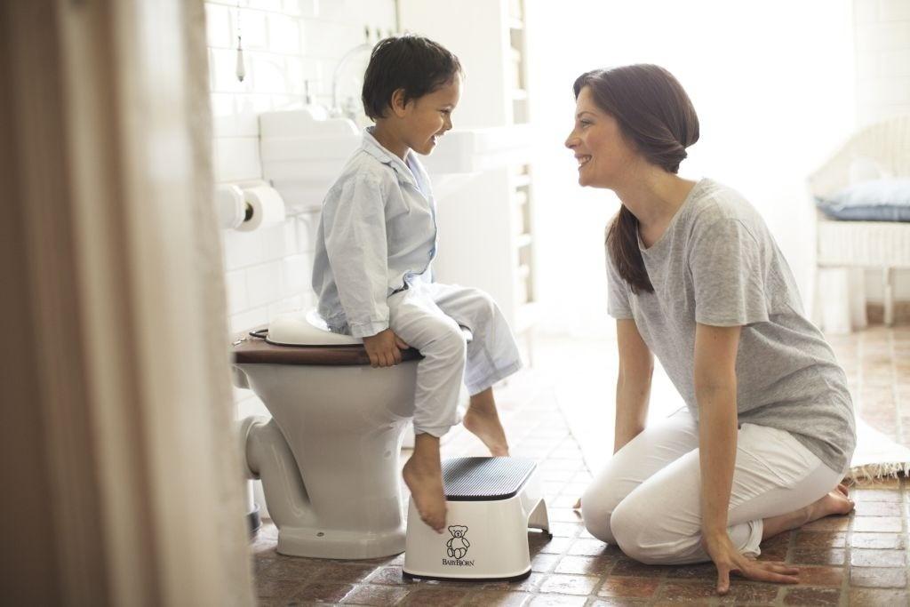 Babybjorn toilet trainer instructions pdf